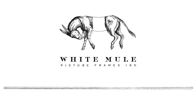 White Mule Picture Frames